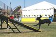 Usdaa2007
